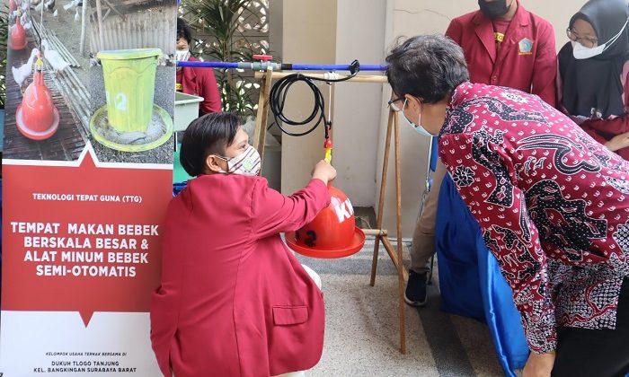 Produk Inovasi Wadah Pakan Bebek Semiotomatis UM Surabaya