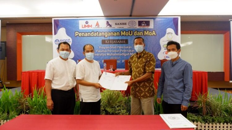 UMM's MoU Realizing The Poultry Professional Class